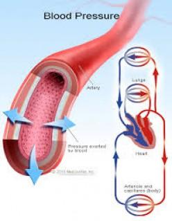 DETERMINATION OF BLOOD PRESSURE