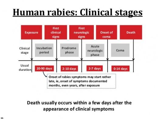 Symptom of Rabies