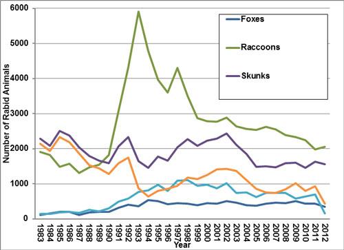 Most Rabid Animals
