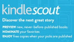 What I Learned from the Kindle scout Campaign