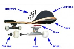 Buying and setting up your first skateboard