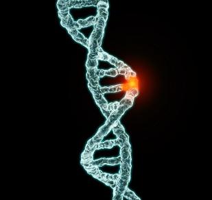 Gene and Depression