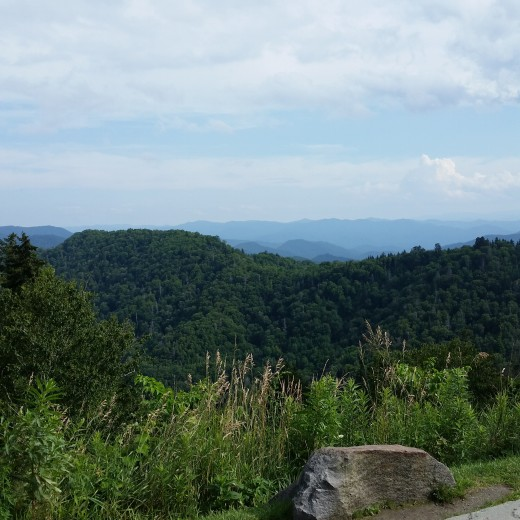 The view from Clingman's Dome on a clear day.