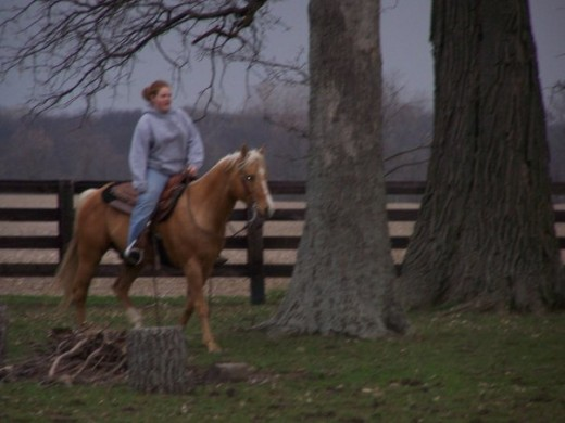 My mare's last baby and I riding.