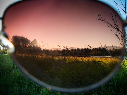 Deer Lake Through Rose Coloured Glasses