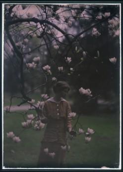 """Edna St. Vincent Millay's """"Renascence"""""""