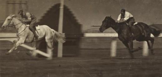 Cool Horse Name Ideas Pethelpful