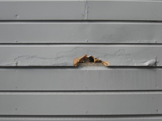 Water-damaged siding.