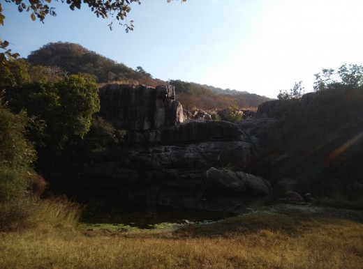 A water hole in Ranthambore Tiger reserve