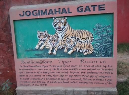 Jogimahal Gate sign board - Ranthambore Fort - inside Ranthambore Tiger Reserve