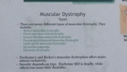 The Many Different Forms Of Muscular Dystrophy