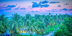 Miami and Fort Lauderdale for Business and Jobs