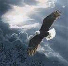 On spiritual wings we rise above the storm.  God gives the lift to our wings.