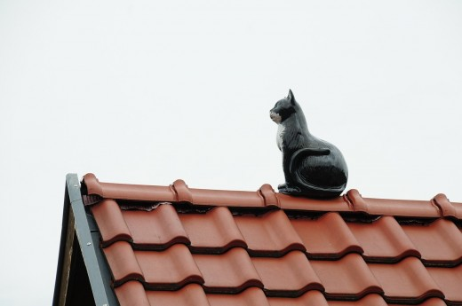 House roofing with a cat statue.