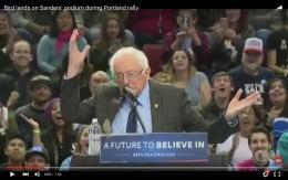 Bird lands on Bernie Sanders' podium during Portland rally.