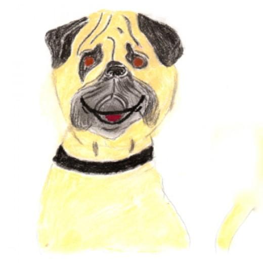 My dog, Charles