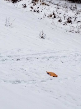 Yellow sled on freshly fallen snow in April