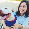 Mariel Sullivan profile image