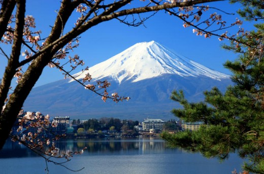 Tokyo, pictured here, has come up with a creative burial solution.