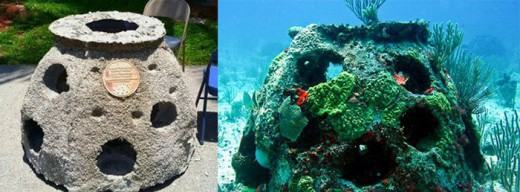 A comparison of an eternal reef, before and after being put out to sea.