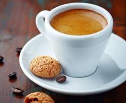 Gaggia 16100 Evolution Home Espresso Cappuccino Machine Review