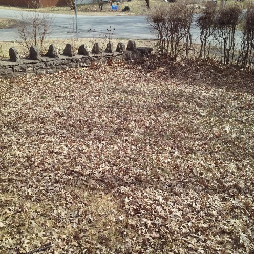 Somehow the leaves find the way back into our yard especially during windy days