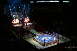 Lucha Tributes: Arena Mexico