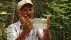 Sensible Ways For Amateur Moonshiners to Avoid Capture