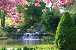 The Spring (poem)