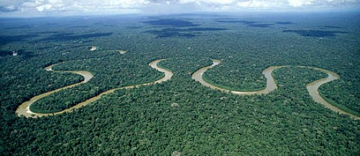 The river Amazon and its picturesque landscape showing how beautiful the amazon is.
