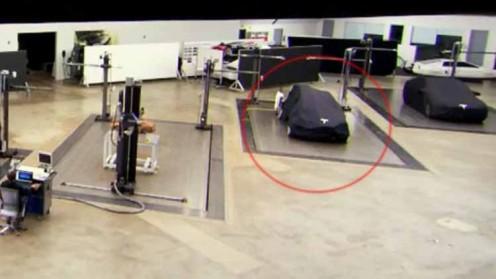 Tesla Model Y: Rumor or Not?