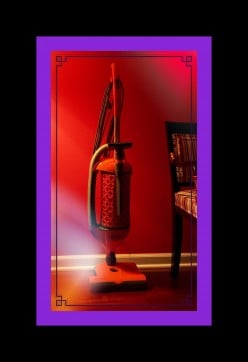 The SEBO Felix is the Best Vacuum I've Ever Owned!!!