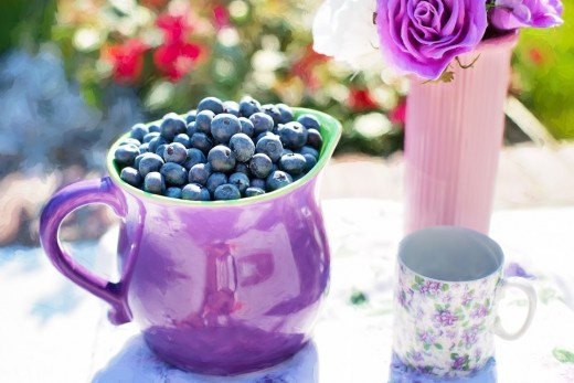 Beautiful lush blueberries