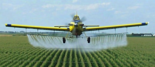 A professional crop duster will cover all of a cotton field with just a few swipes