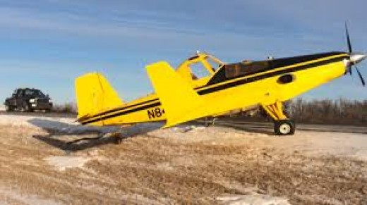 Most crop dusting pilots use a yellow plane to set them apart from other planes