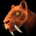 The Extinct Sabre-toothed Tiger, Wooley Mammoth and Egyptian Cattle