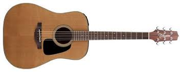 Takamine Pro Series 1 P1D Dreadnought Body Acoustic