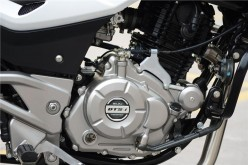 220cc DTSi (Twin-Spark), Single-Cylinder, Oil-Cooled Engine