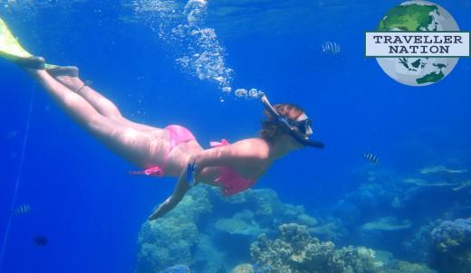 Tengah Island Snorkling Spot
