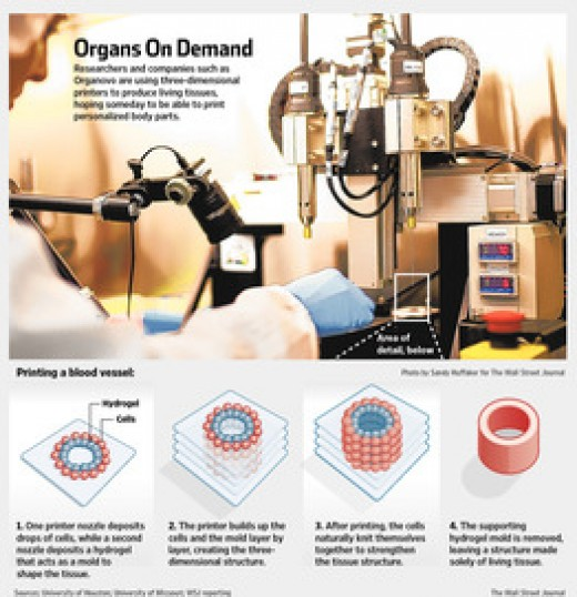 3D Printing of Organs