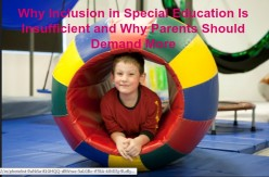 Why Inclusion in Special Education Is Insufficient and Why Parents Should Demand More