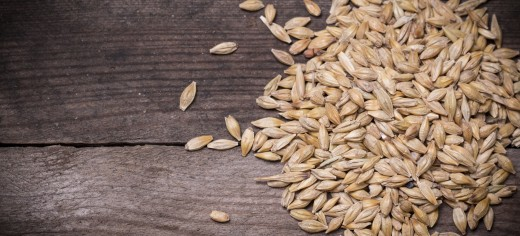 Barley Recipes and Dishes