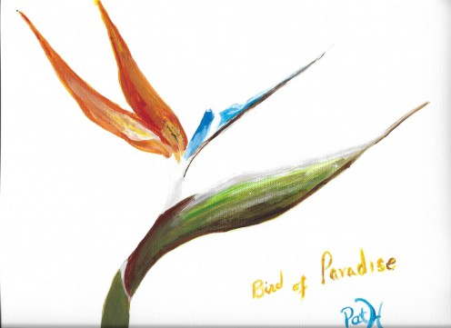 Acrylic painting of a Bird of Paradise.
