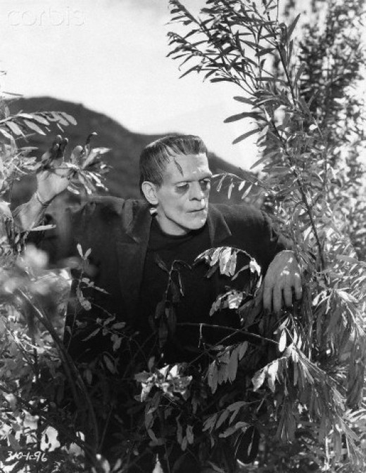 1931 movie still  for Frankenstein  peering through bushes.