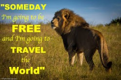 How i started traveling the world And Makeing money online