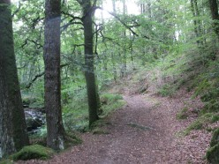 Take a Word.... PATH or PATHWAY: Etymology, Phrases, a Poem & a Short Story