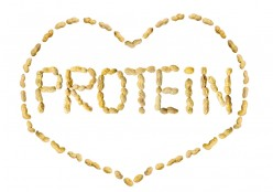 Do You Get Enough Protein and Calcium