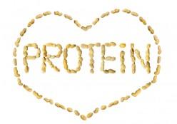 Do You Get Enough Protein and Calcium