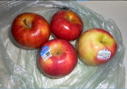 Apples: A Taste Test of Four I've Not Tried Before