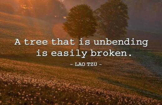 Thank you Lao Tzu